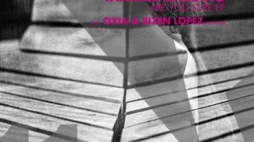 DVM 011 ARTWORK